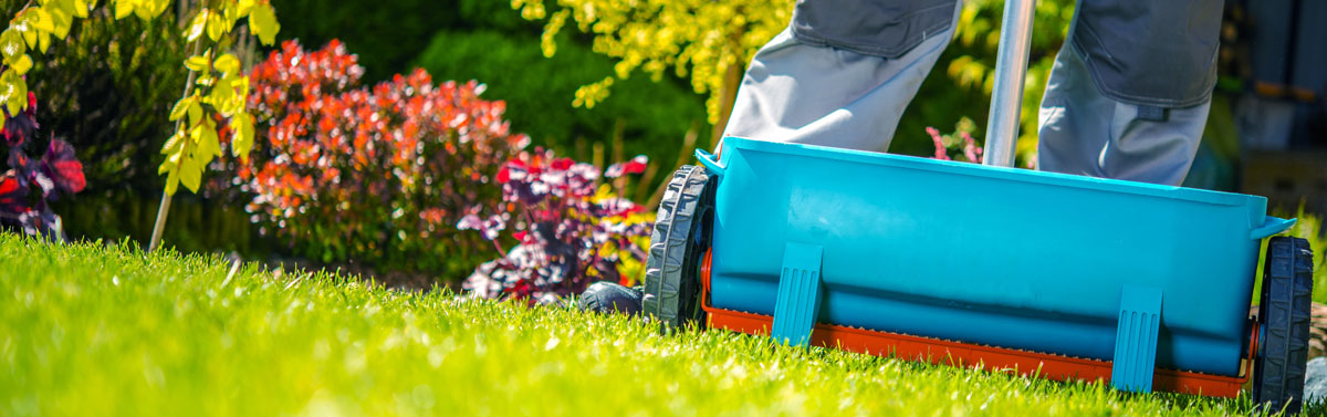 When Should I Fertilize My Lawn Envirospray