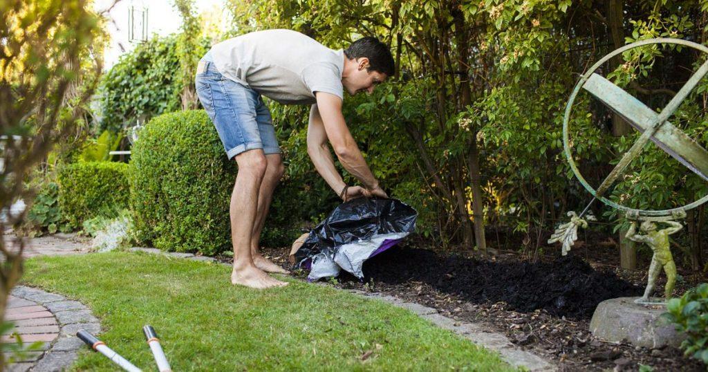 best fertilizer